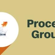 TBRP Process Group abstinence Kirklees